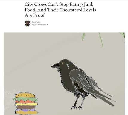 city crows are eating too much cholesterol